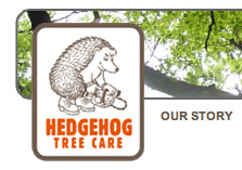 Hedgehog Tree Care